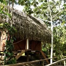 Campside 6