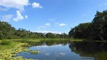 Lagoon View