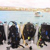 diving cruise 6