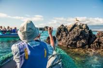 galapagos activities 4