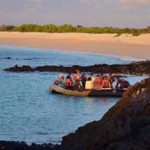 galapagos activities 6