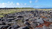 lava stone landscape