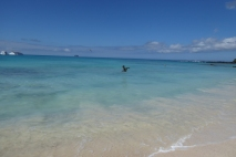 santa cruz, bachas beach
